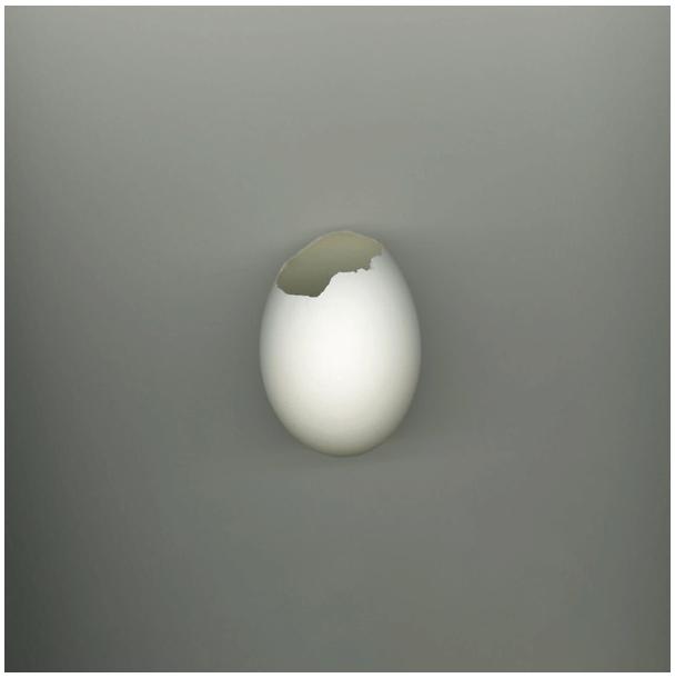 Broken Egg 1 by Robin Du Plessis